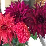 木の香りとお花に囲まれた癒しの美容室☆